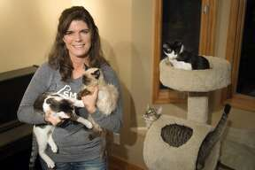 Sylvia Gilvydis of Sanford is president of Shores of the Mitten Animal Rescue and Transport, also known as Smart Paws Rescue, and is working to raise money for an animal sanctuary. Throughout December S.M.A.R.T Paws will be at Soldan's Pet Supplies selling baked goods to raise money and will have cats that are available for adoption from noon to 6 p.m. On December 9 they will be at Members First Credit Union instead.