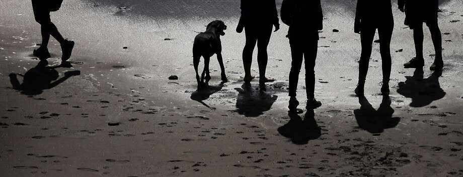 The Wong family walks on the beach with Kona  as they and others enjoy the area at Fort Funston in San Francisco, Calif., on Tuesday, March 22, 2016. Photo: Carlos Avila Gonzalez, The Chronicle