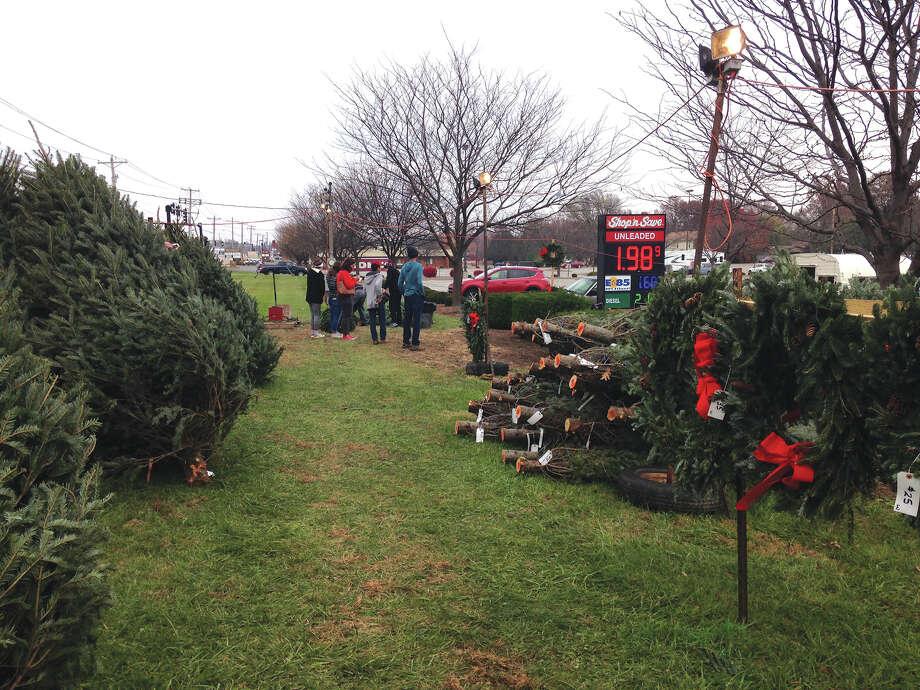 The Lions Club tree lot outside Shop 'n Save. Photo: Bill Tucker • Btucker@edwpub.net