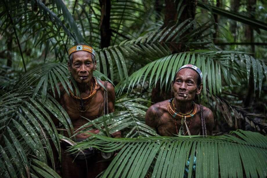 Teu Kapik Sibajak, left, and Aman Aqwi Sakkukuret, both members of the Mentawai tribe, walk through the jungle on Siberut Island in Indonesia. Photo: SERGEY PONOMAREV, STR / NYTNS