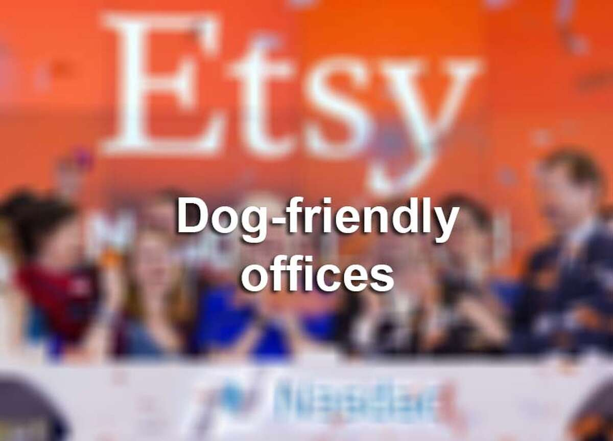 Dog-friendly offices across the U.S.