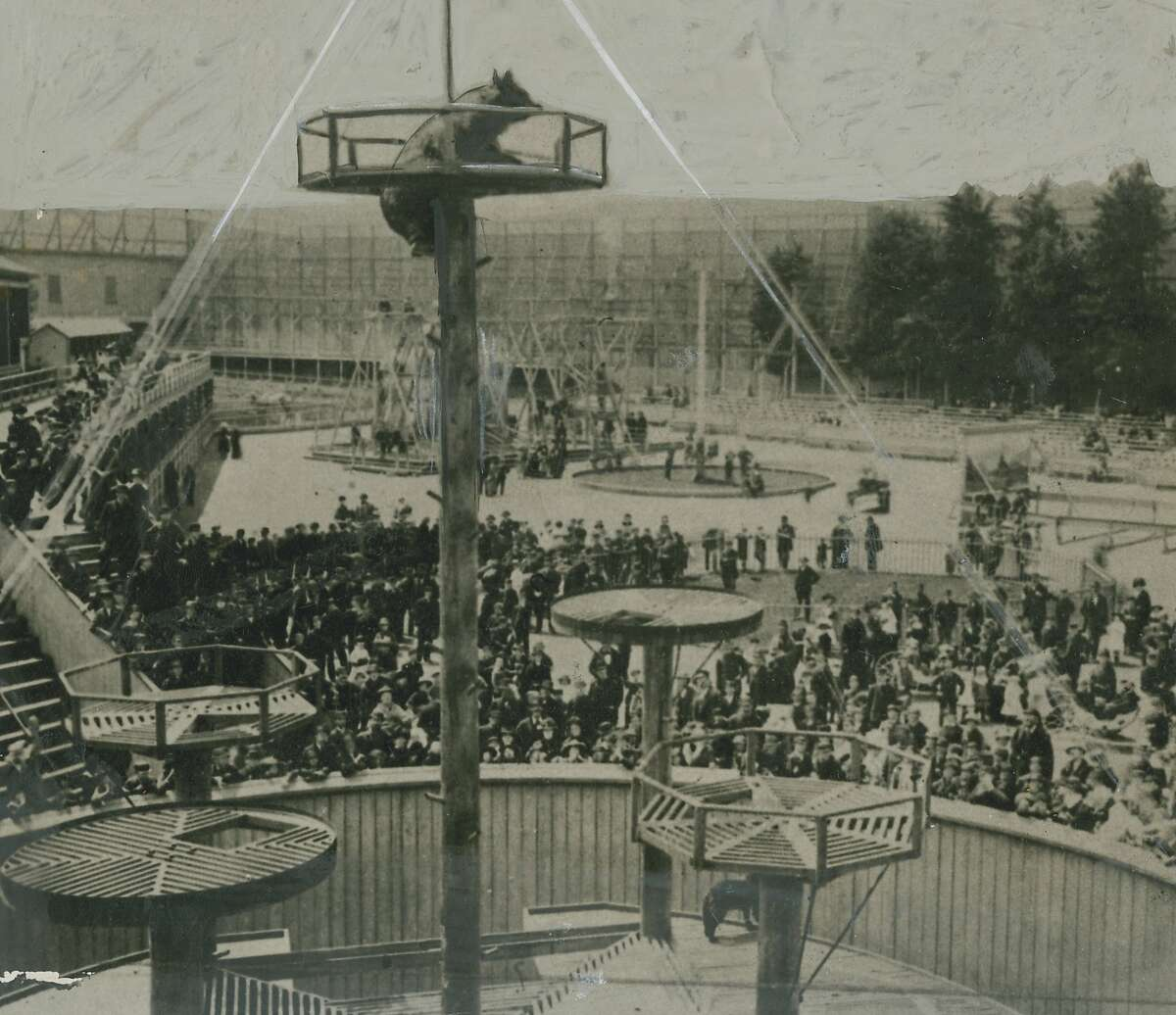 Bear pit at Woodward's Garden, which was at 13th and Mission Streets, and covered 5 acres. The park ran from 1866 to 1891. Photographer unknown.