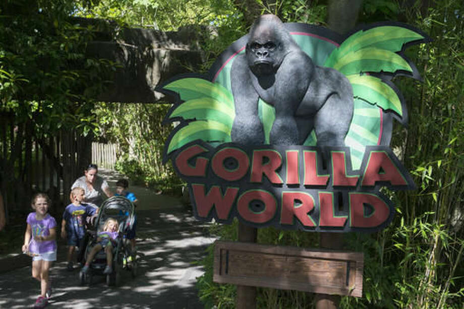 "FILE - In this June 7, 2016, file photo, visitors enter the Gorilla World exhibit at the Cincinnati Zoo & Botanical Garden in Cincinnati. Federal inspectors concluded that the Cincinnati Zoo's barrier to keep the public and gorillas separate wasn't ""effective"" for housing primates when a boy slipped into the gorilla exhibit and a gorilla named Harambe was fatally shot on May 28. (AP Photo/John Minchillo, File) Photo: John Minchillo"