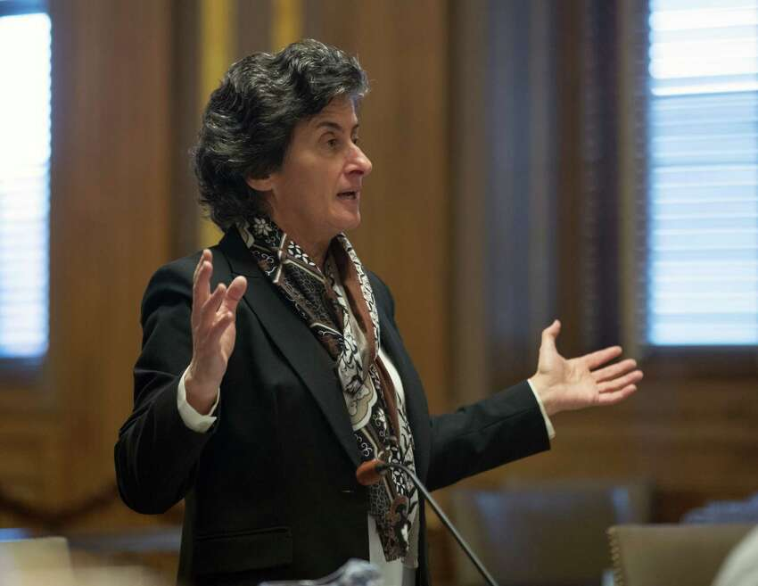 Assistant Attorney General Loretta Simon, representing the state Department of Environmental Conservation, speaks during a hearing on new snowmobile trails being carved through the Adirondack forest on Monday, Dec. 5, 2016, in Albany, N.Y. A state court will decide whether the new trails violate the