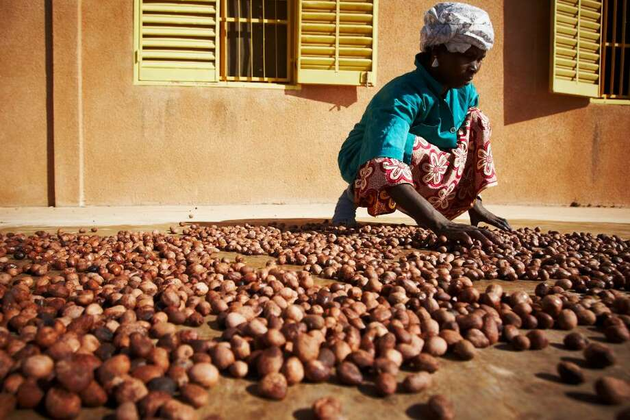 A woman spreads shea nuts on a concrete floor to dry them in the sun at the Si Yiriwa shea processing center in the town of Diolila, Mali on Friday January 15, 2010. Photo: Olivier Asselin / Olivier Asselin
