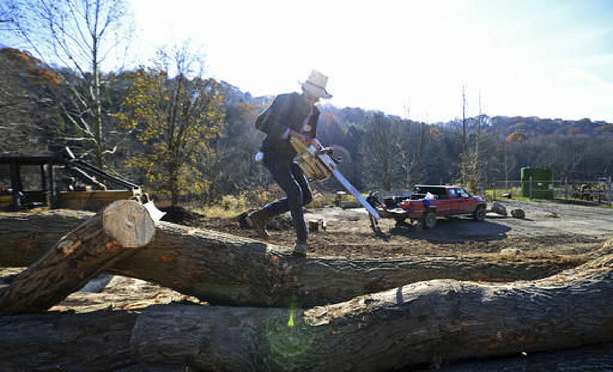 In this Tuesday, Nov. 15, 20156 photo, Allen Miller, of Dayton, scales a pile of rough timer while logging in Lower Burrell, Pa. (Louis B. Ruediger /Pittsburgh Tribune-Review via AP)