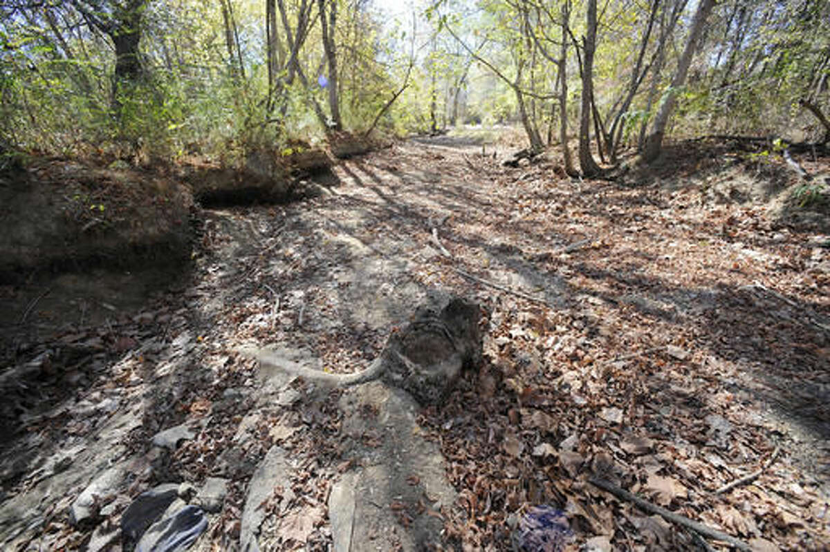 The bed of a creek dried up by weeks without rain is shown in Helena, Ala., on Thursday, Nov. 17, 2016. Federal statistics show nearly 90 percent of the state is now in a severe drought. And the U.S. Drought Monitor shows 65 percent of the state is in an extreme or exceptional drought. (AP Photo/Jay Reeves)