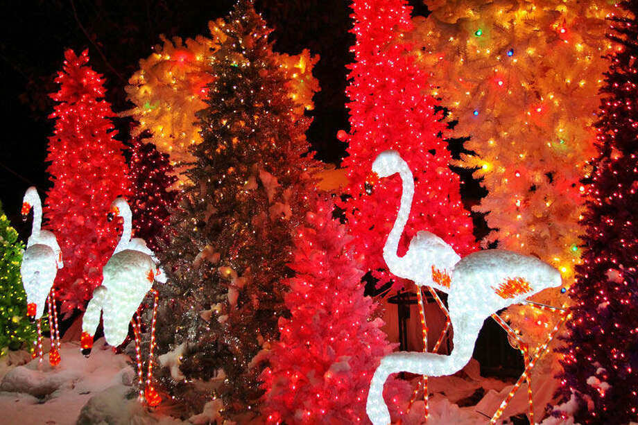 A view of a previous Wild Lights at the Saint Louis Zoo.