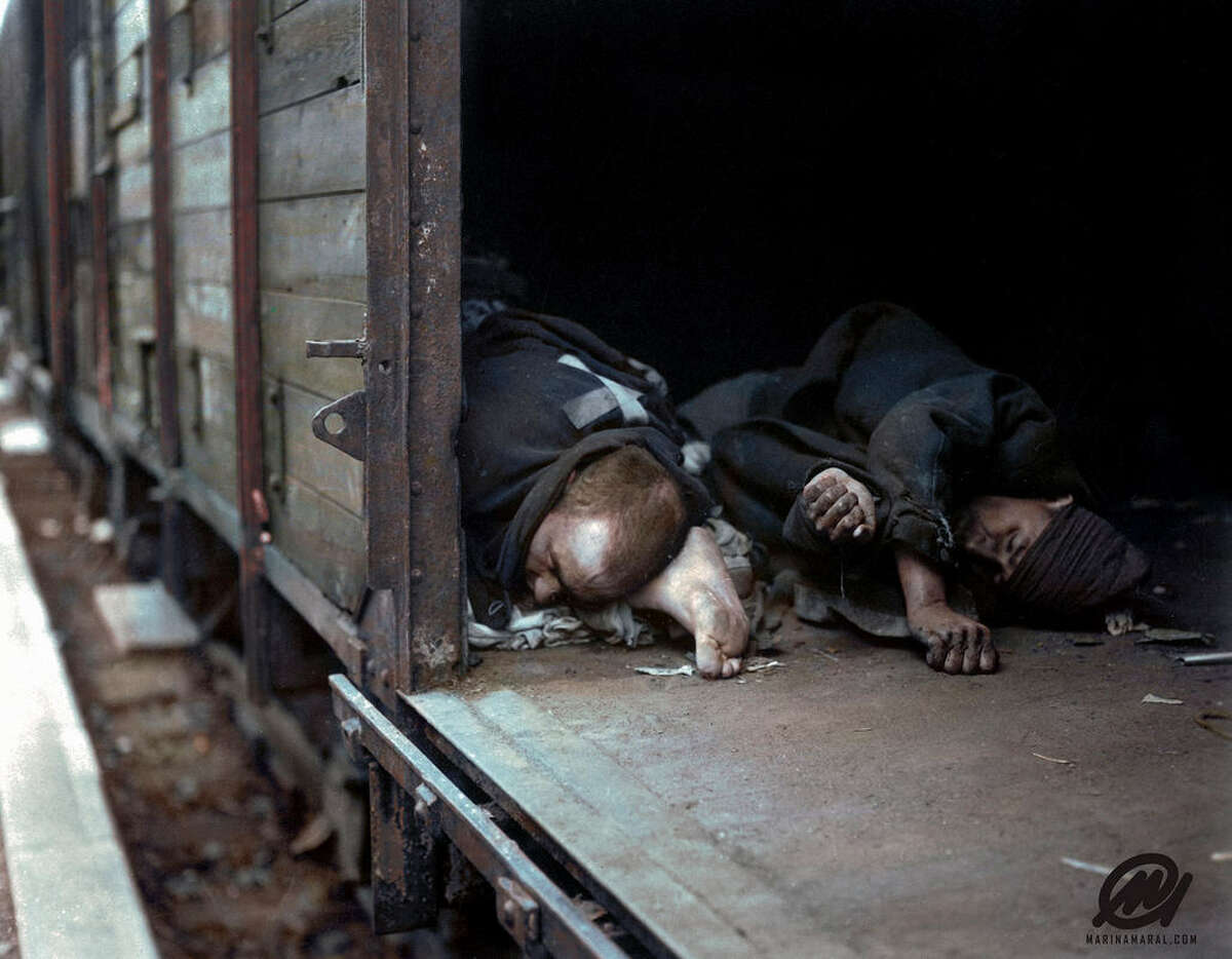 Three bodies of prisoners shot by Nazis in a boxcar by SS troops at Seeshaupt, Germany.