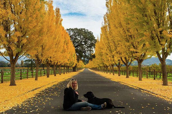 @imanor  took this self photo as the leaves reach peak color in Napa.