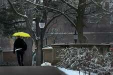 A pedestrian walks through Congress Park in a light snow Wednesday  Dec. 7, 2016 In Saratoga Springs, N.Y. (Skip Dickstein/Times Union)