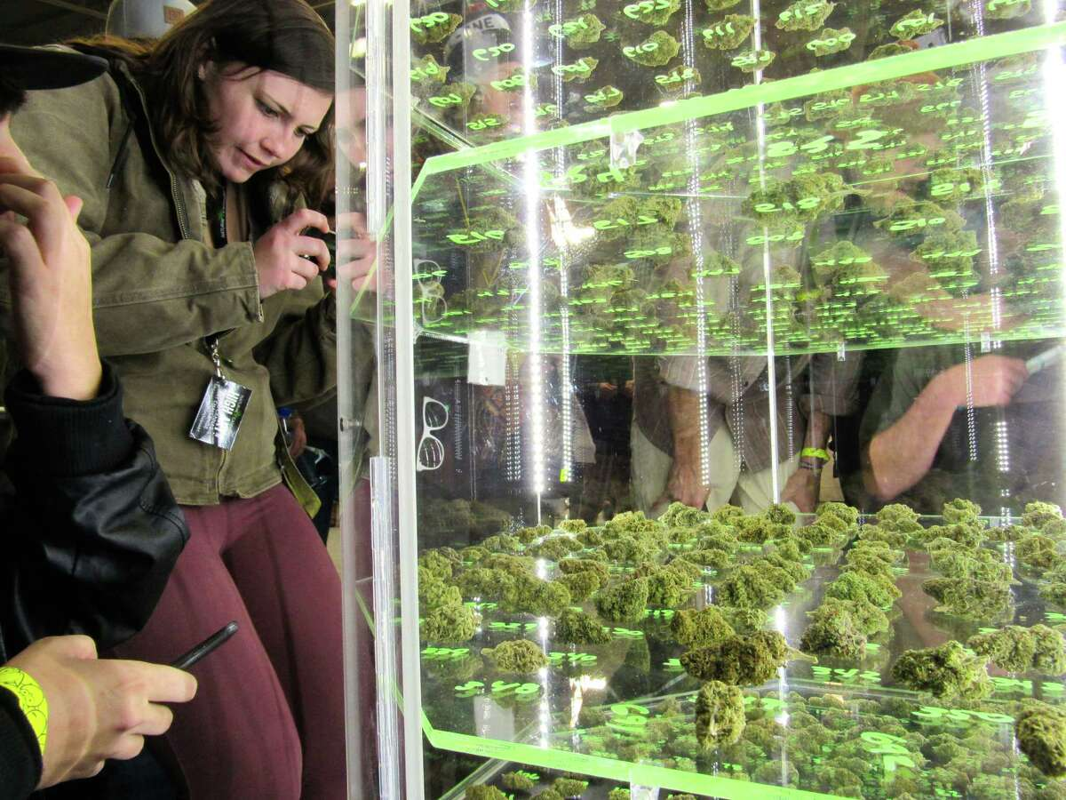 Attendees look at cannabis flower bud entries in 2014 at the Emerald Cup, which returns to Santa Rosa this weekend.