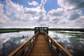 The newly opened boardwalk at Cattail Marsh in Beaumont spans more than 500 feet and offers two gazebos where guests can find shade.   Photo taken Tuesday, July 26, 2016 Guiseppe Barranco/The Enterprise