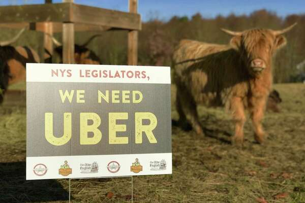 """Capital Region restaurant owner Matt Baumgartner has spent $1,000 on """"We Went Uber"""" signs like this one, shown at his farm in Averill Park. The signs are popping up around the reigon. (Contributed photo.)"""