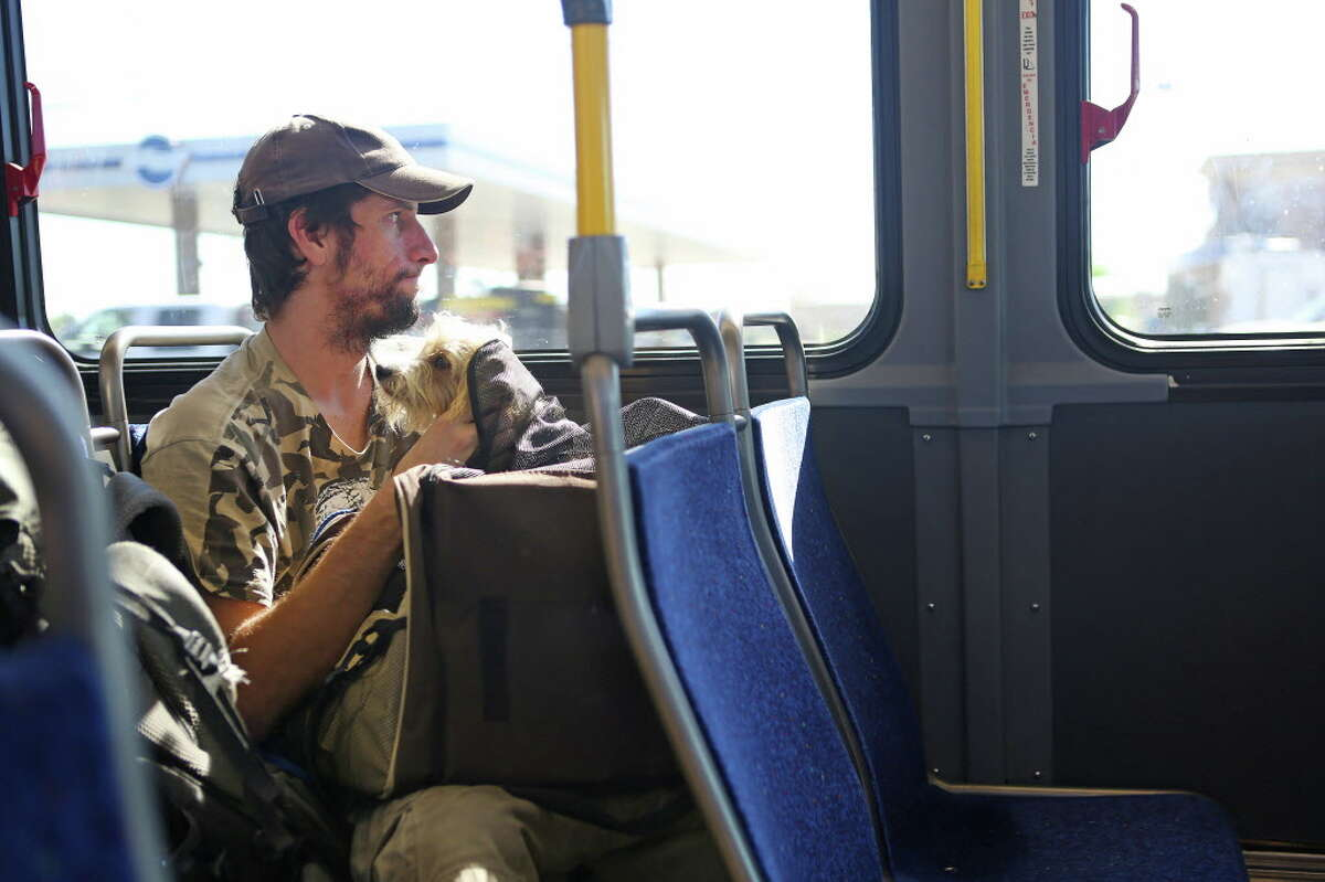 METRO bus rules require that dogs stay in a bag, but Franklin clearly prefers freedom.
