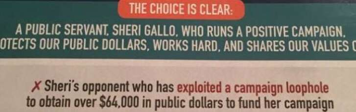 Sheri Gallo said in this mailer that her runoff opponent, Alison Alter, exploited a loophole to draw campaign funds (spotted November 2016).