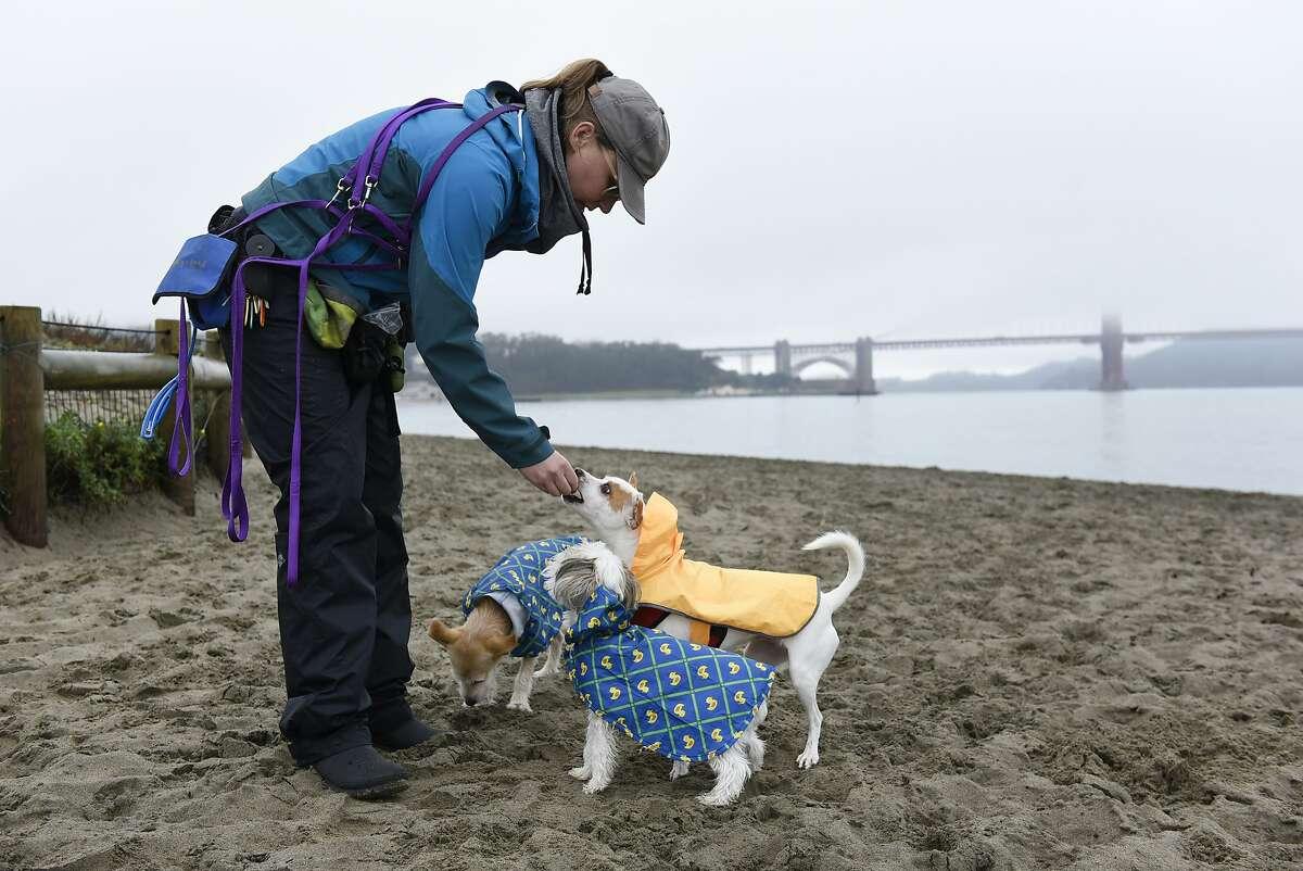 FILE-- Professional dog walker Kate Moga, who works under the company name