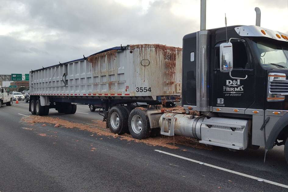 Chicken guts oozed out of a big rig Thursday afternoon on Highway 101 in San Mateo when the truck stopped abruptly.