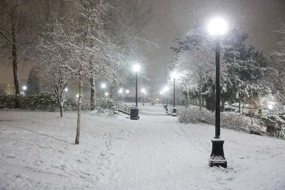 Cal Anderson Park during the first snowfall of the season, Thursday, Dec. 8, 2016. Photo: GRANT HINDSLEY/SEATTLEPI.COM