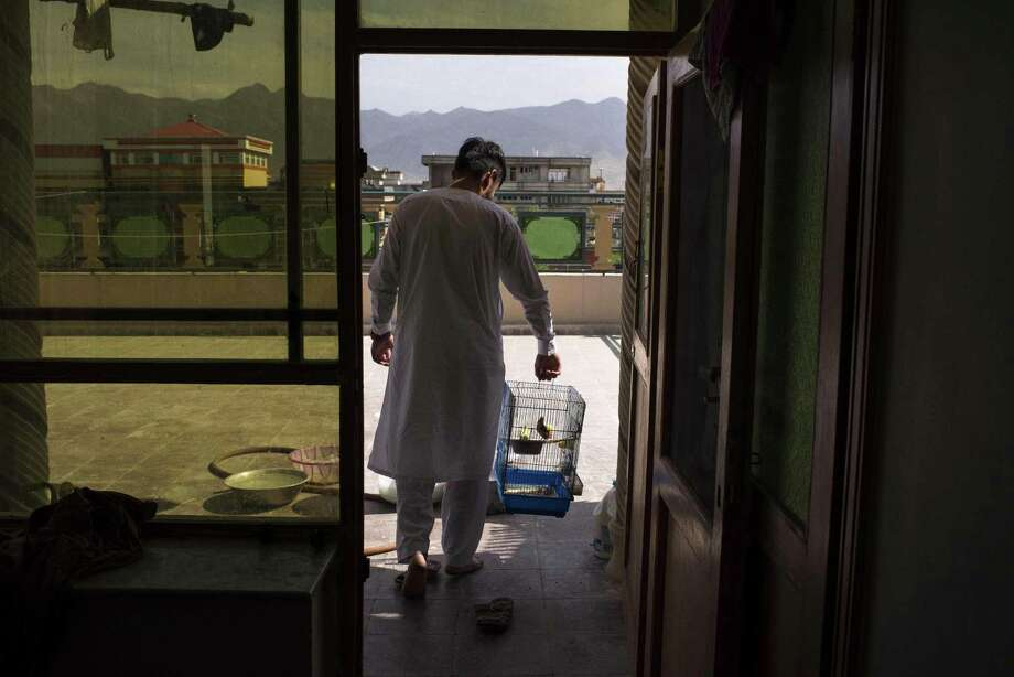 FILE — Zar Mohammad Stanikzai, an Afghan who worked as an interpreter and whose application for a United States visa was rejected, with pet birds on the roof of an uncle's home in Kabul, Aug. 6, 2016. After protracted debate, Congress partially renewed a nine-year-old visa program for Afghans under serious threat for helping American troops on Dec. 8. (Andrew Quilty/The New York Times) Photo: ANDREW QUILTY, STR / NYT / NYTNS