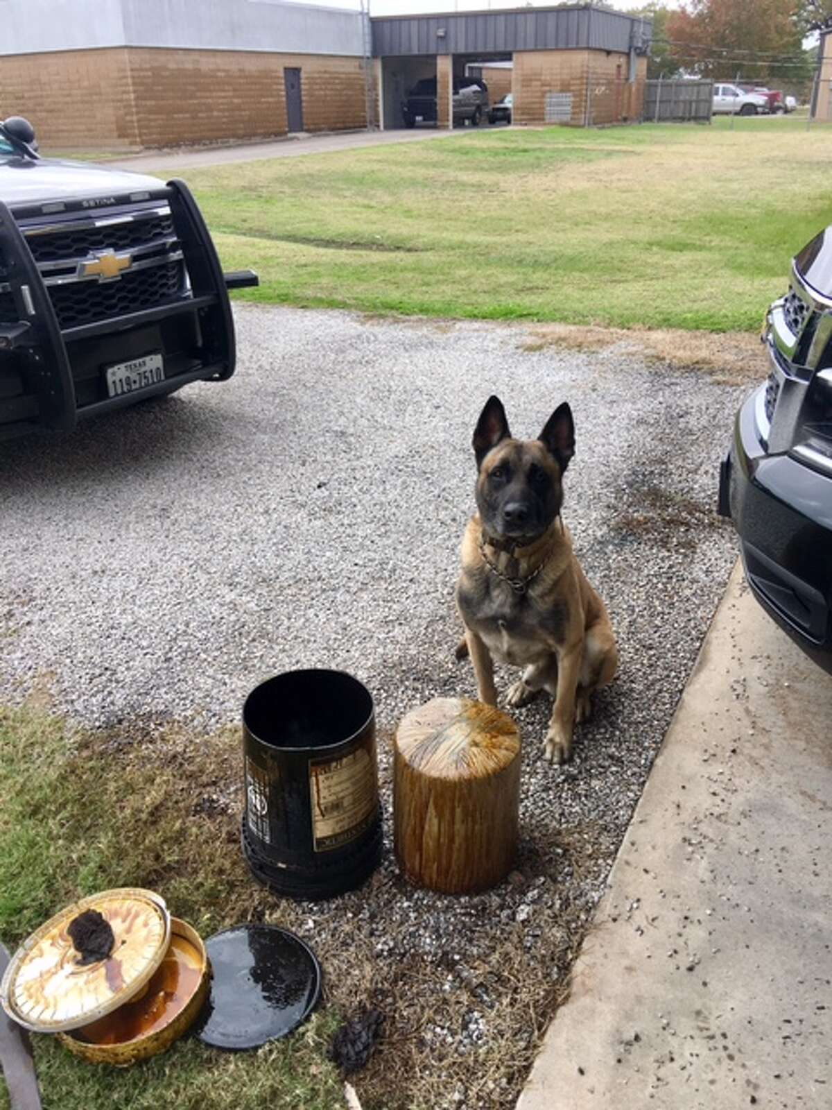 """Sgt. Randy Thumann observed """"many criminal indicators"""" while speaking with the driver, 54-year-old Celerina Lopez Rosa. His K9 partner Lobos then confirmed his suspicions of a 5-gallon oil bucket in the truck's bed by alerting Thumann to it, according to the release."""