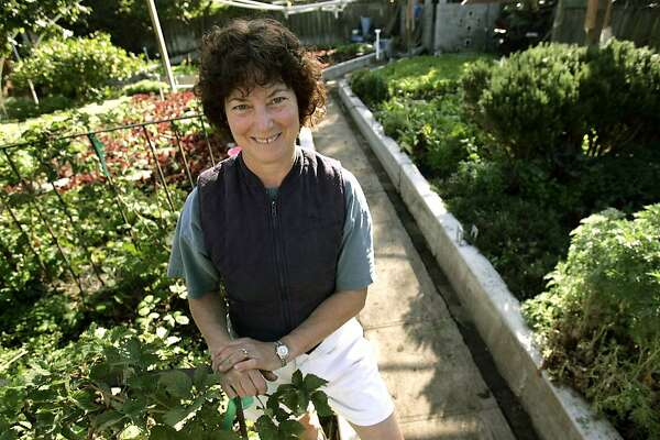 KITCHENFIVERULES_076_kk.jpg Weinstein and overview of her garden. Sidney Weinstein, owner of the Pauline's Pizza restaurants, shows us her Berkeley backyard garden, which produces enough greens to supply her restaurant as well as Boulevard and Blue Plate.  Photo by Kim Komenich in Berkeley  Ran on: 10-02-2004 Sidney Weinstein checks a tub of 'Bambi' romaine lettuce in her half-acre backyard organic garden in Berkeley.