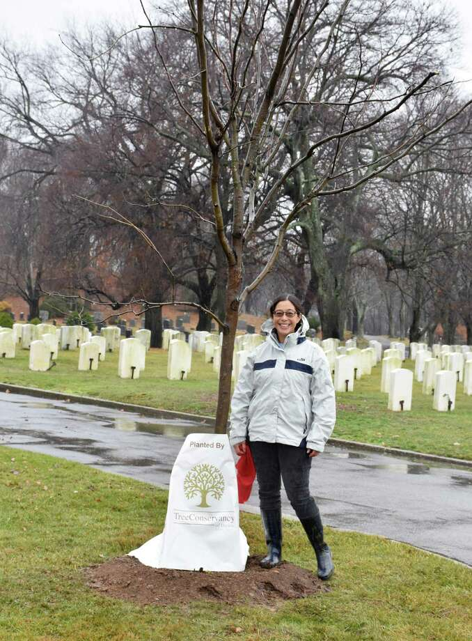 Sabina Harris, chair of Tree Conservancy of Darien, stands next to one of the newly planted trees the group placed at Spring Grove Cemetery and Veteran's Cemetery. Photo: Contributed Photo