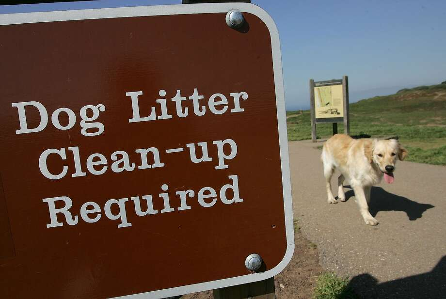 A dog walks by a sign about litter clean-up at Ft. Funston in San Francisco. Browse the gallery for great dog photos from the Chronicle archives. Photo: Justin Sullivan, Getty Images