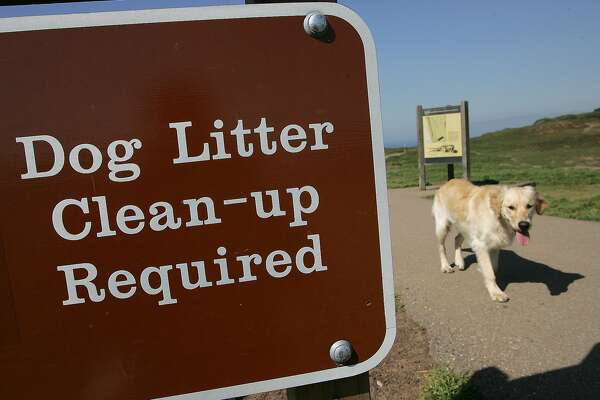 SAN FRANCISCO - FEBRUARY 24:  A dog walks by a sign about litter clean-up at Ft. Funston February 24, 2006 in San Francisco. San Francisco is on its way to being the first city in the nation to convert dog waste to alternative energy by ingesting discarded dog feces into a methane digester, a device that uses bugs and eat the material and emit methane, which would be trapped and burned to power a turbine to make electricity. Dog waste accounts for 4 percent of garbage picked up at San Francisco homes.  (Photo by Justin Sullivan/Getty Images)