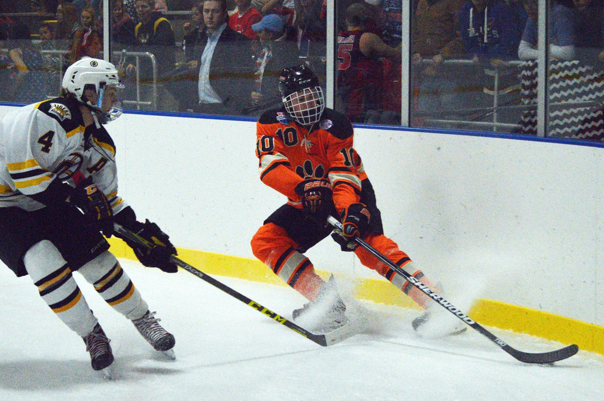 ice hockey periods