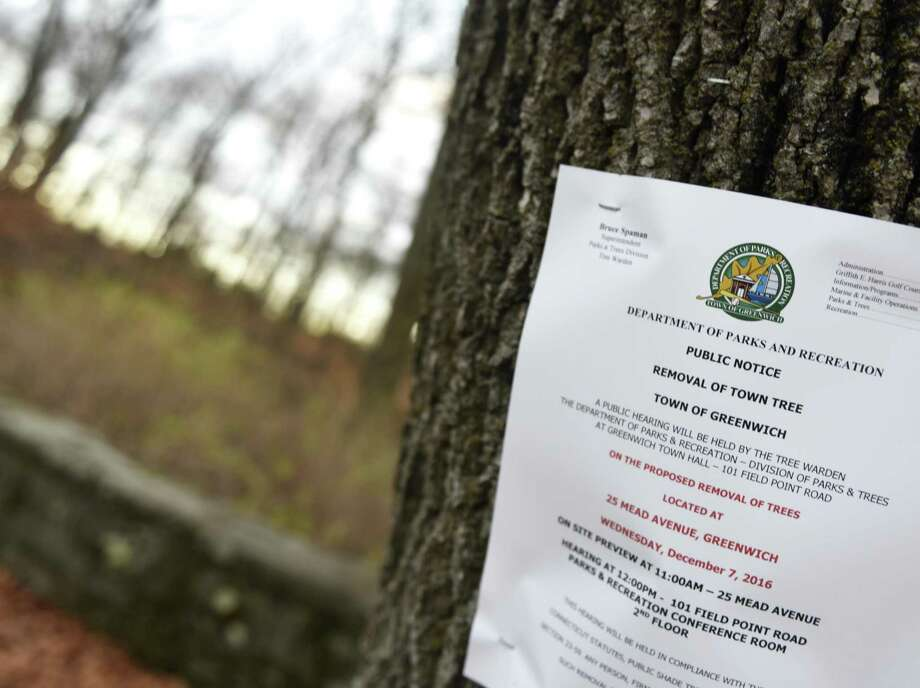 A hearing will be held Wednesday to discuss potentially removing upwards of 200 trees behind New Lebanon School in the Byram section of Greenwich, Conn. as part of the New Lebanon School project, which involves demolishing the school and replacing it with a larger building and parking lot. Photo: Tyler Sizemore / Hearst Connecticut Media / Greenwich Time
