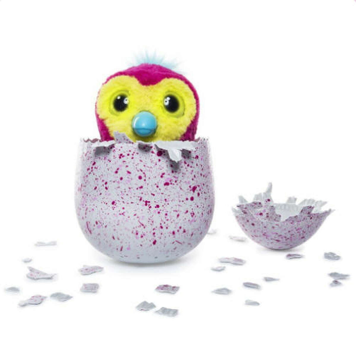 The toy This year's toy that's insanely highly sought is a Hatchimal. Basically, someone hatches their own egg and a toy comes out to play with.