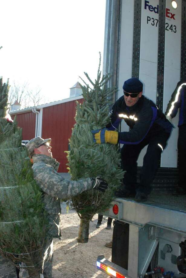"FedEx driver Don Pelletier lifts a donated Christmas Tree onto his truck during the loading of holoiday trees November 30 for ""Trees for Troops."" Twenty members of the New York Army and Air National Guard volunteered their time to help load about 125 donated Christmas Trees at Ellms Tree Farm in Charlton, N.Y. in support of their delivery this holiday season as part of ?Trees for Troops.? The Soldiers, part of the 42nd Infantry Division Headquarters, and Airmen, from the 109th Airlift Wing, were present to show their support of fellow service members currently overseas for the holiday season. The donated trees will be delivered to Fort Bragg, North Carolina. U.S. National Guard photo by New York Army National Guard Col. Richard Goldenberg/RELEASED. Photo: Col. Richard Goldenberg"