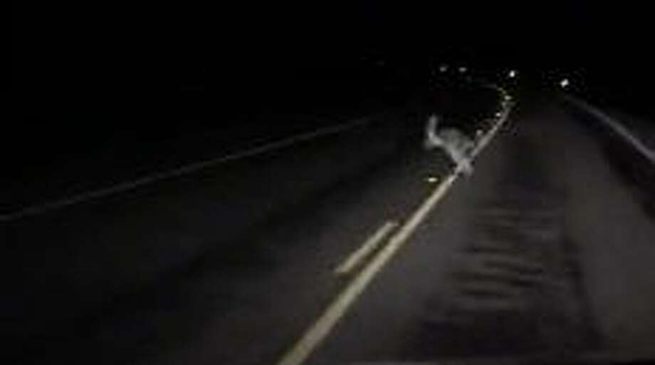 A man driving home from work, somewhere in Texas, was startled to see a Kangaroo hop across the road in front of him. He was able to shoot a brief video clip. (Screen grab via LiveLeak/Jakeb) Photo: Screen Grab Via LiveLeak/Jakeba>