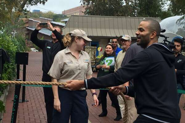 Tony Parker was at the San Antonio Zoo to name the Zoo's two new jaguar cubs when he decided to played a game of tug of war.