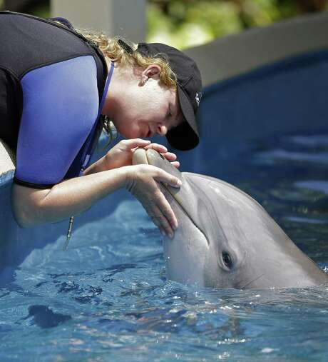 SeaWorld Parks & Entertainment is partnering with a United Arab Emirates company to build a theme park in Abu Dhabi in what will be the first SeaWorld park outside the United States and without orcas. Photo: Associated Press /File Photo / Copyright 2016 The Associated Press. All rights reserved.