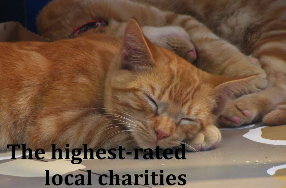 Who did Charity Navigator rate highly? Click ahead to find out. Photo: Stephanie Wright Hession