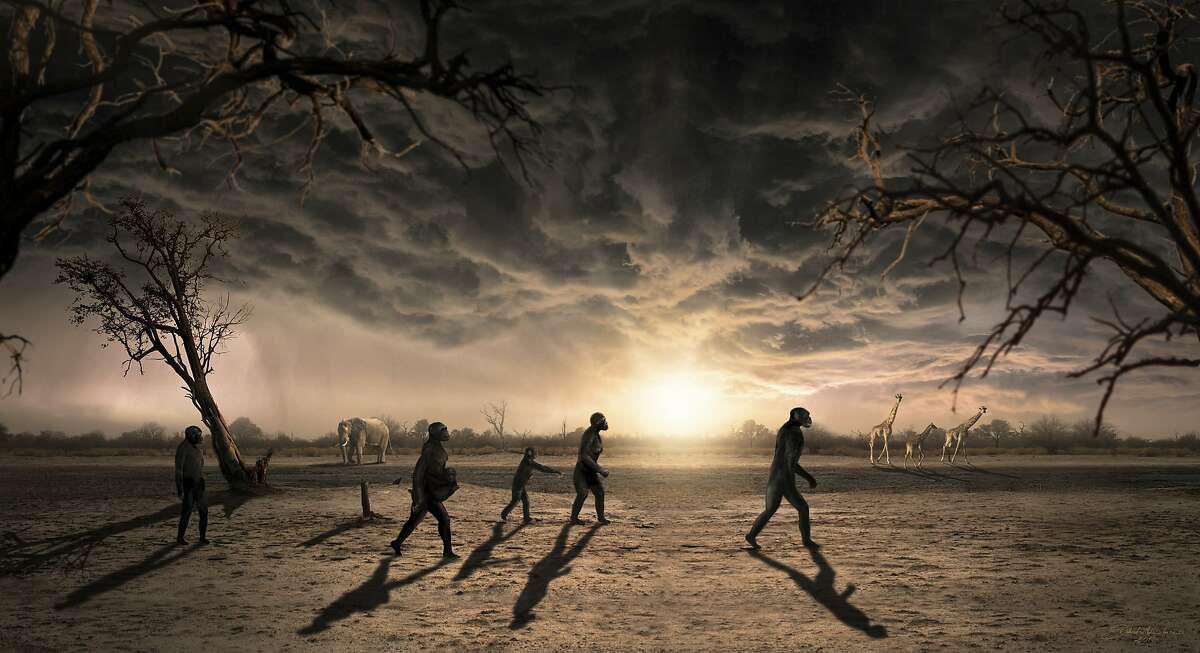 This illustration provided by Dawid A. Iurino in December 2016 shows a reconstruction of the northern Tanzanian Laetoli site 3.66 million years ago, where 14 footprints from a human ancestor, believed to be Australopithecus afarensis, were found. Findings were described in a report released Wednesday, Dec. 14, 2016, by the journal eLife. (Dawid A. Iurino via AP)