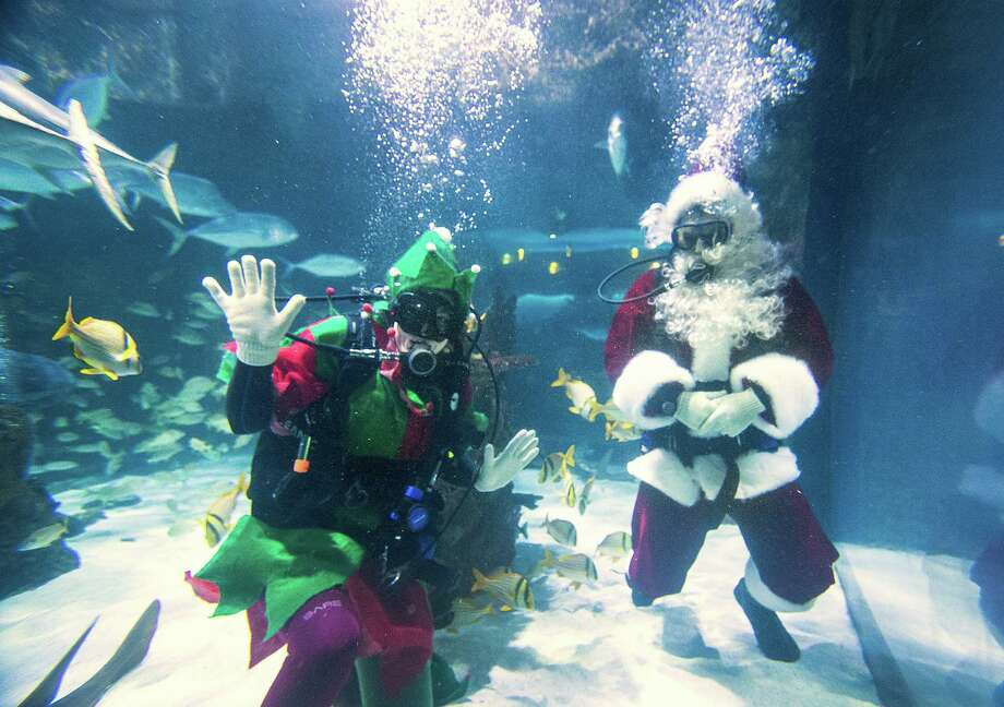 Santa and his elf, in the fish tank, during Breakfast with Santa at the Downtown Aquarium in Houston. (For more Santas in hard-to-believe places, scroll through gallery.) Photo: Brett Coomer, Staff / © 2015 Houston Chronicle