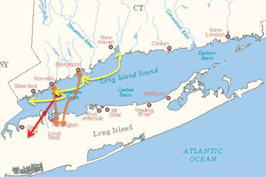 The projected trade routes for the Harbor Harvest sustainable shipping project include ports in Stamford, Norwalk, Bridgeport and New Haven. The first route would be from Norwalk to Glen Cove, Long Island. Photo: Contributed / Contributed