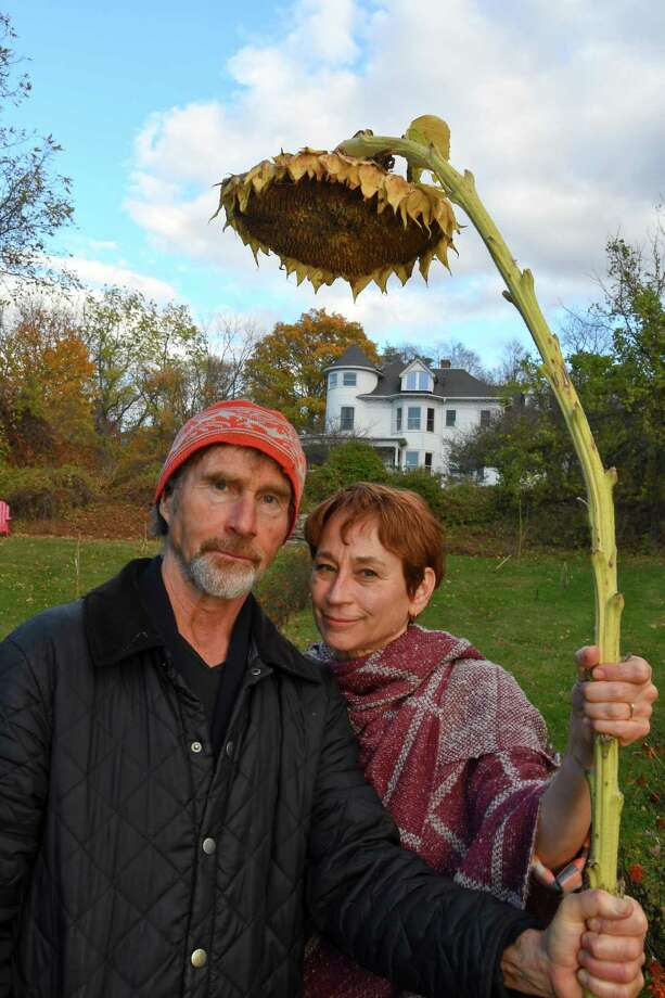 Moses Pendleton, founder of the modern dance company Momix, with his wife Cynthia Quinn, have fun with sunflowers in their home garden. Photo: Bradley E. Clift / Hearst Media Connecticut / All images produced are owned by Bradley E. Clift  © 2016  Any use beyond Hearst Media must have written permission from copyrig