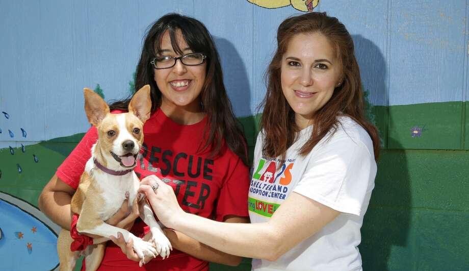 Cynthia Gutiérrez y Susie Druker posan para una fotografía con uno de los perros disponibles para adopción en el refugio de Laredo Animal Protective Society Shelter. Photo: Foto Por Víctor Strife|Laredo Morning Times / Laredo Morning Times