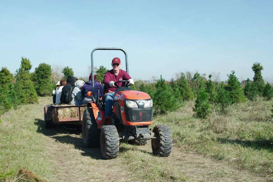 "Holiday Acres Christmas Tree Farm owner Rocky Smith uses a tractor to take guests on a tour. ""When people come here they're happy,"" says his wife, Leigh Ann. Photo: Kirk Sides / © 2016 Kirk Sides / Houston Community Newspapers"
