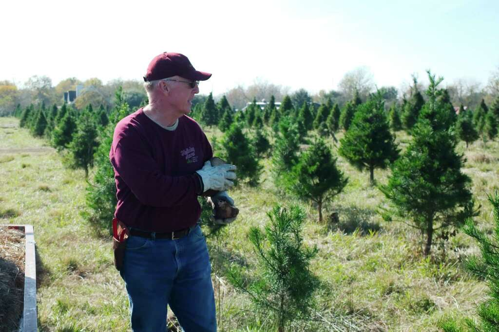 Manvel tree farm buzzes with holiday shoppers - Houston Chronicle