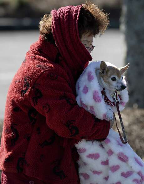 The wind should be the only thing howling outside our windows this winter. With wind chills dipping into the single digits, furry friends left outside are at risk of frostbite or hypothermia, both of which can be deadly. (AP Photo/David Tulis) Photo: David Tulis, FRE / FR170493 AP