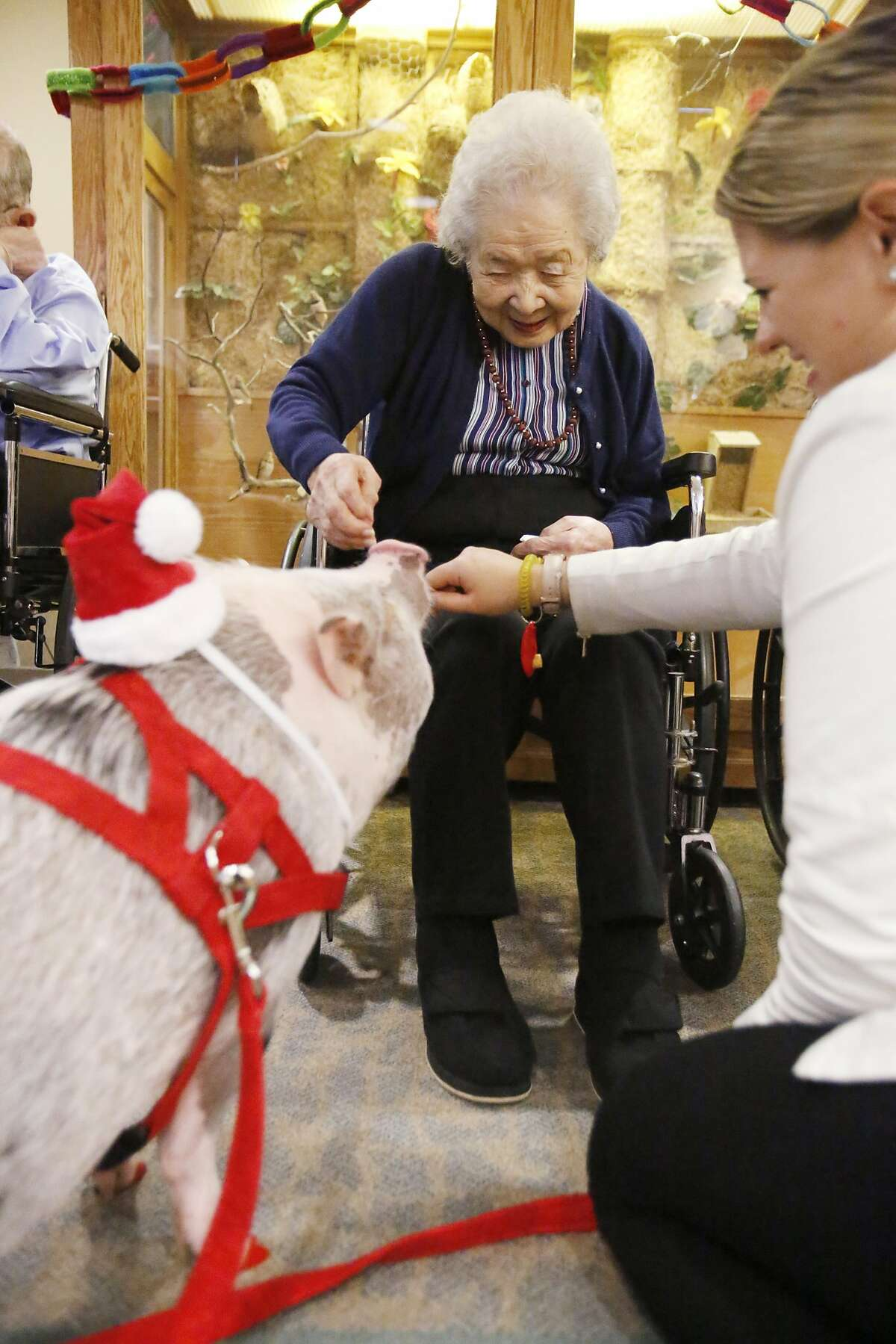 LiLou and her owner, Tatyana Danilov, say hello to Miyoko Sera, 103, one of the oldest residents at The Sequoias Health Center in San Francisco Saturday December 10, 2016.