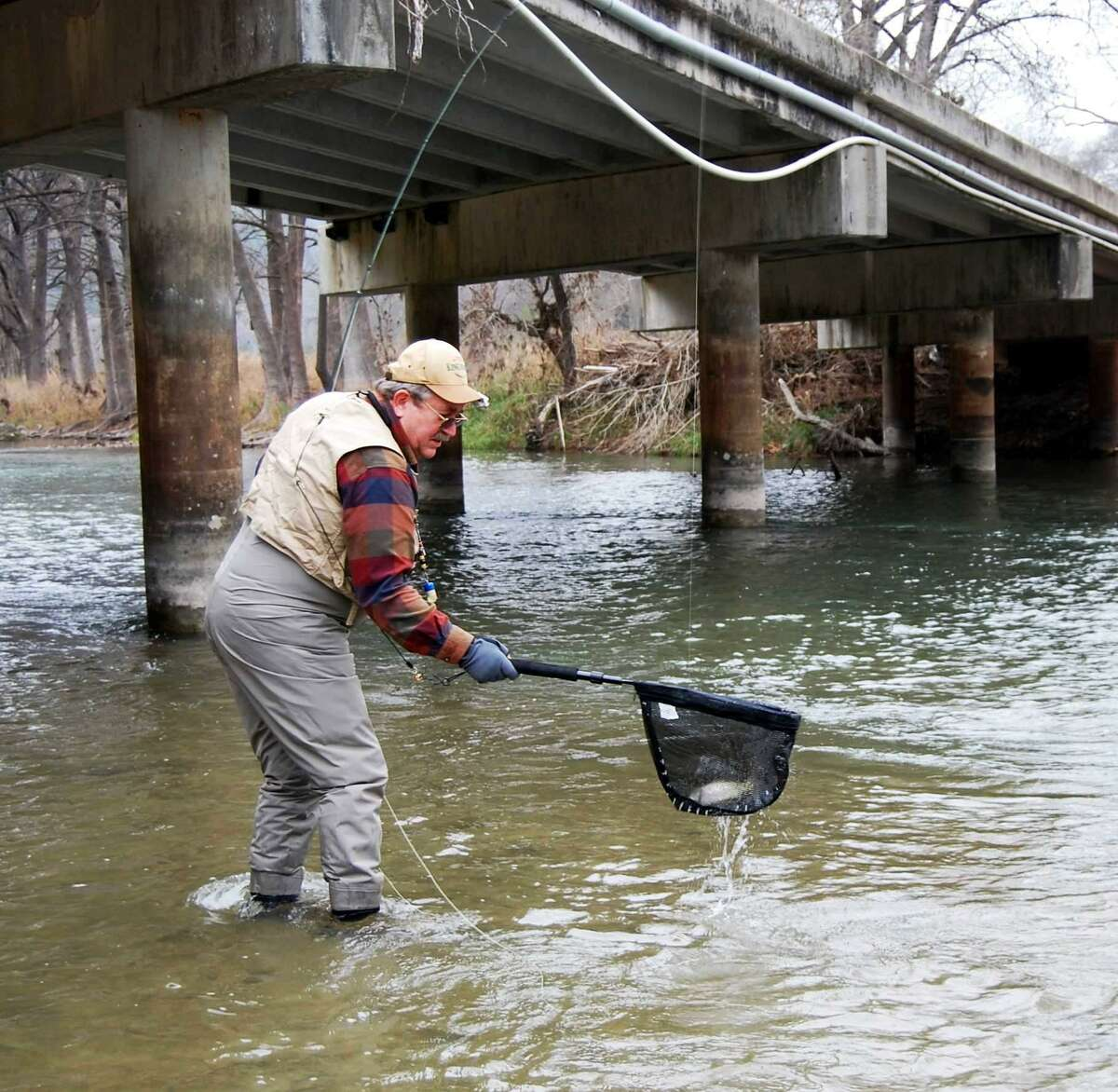 Dan Moseley of San Antonio nets a rainbow trout he caught while fishing in the Guadalupe River as one of the fly fishing anglers who travel from throughout the world in order to take advantage of the fishery to be highlighted at the Guadalupe River Chapter of Trout Unlimited's annual TroutFest that runs from today through Sunday.