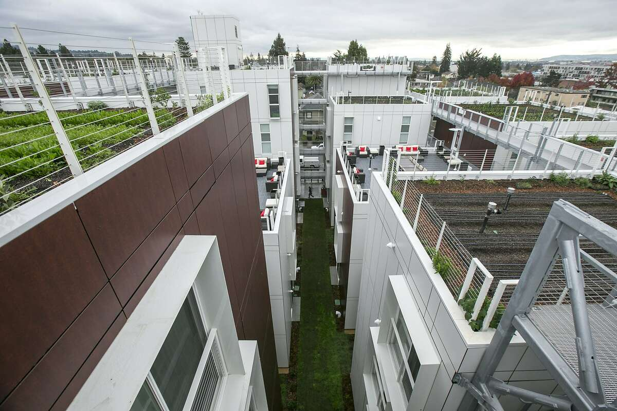 The rooftops at the Garden Village, an apartment complex loctated at 2201 Dwight Way on Wednesday, Dec. 14, 2016 in Berkeley, Calif.