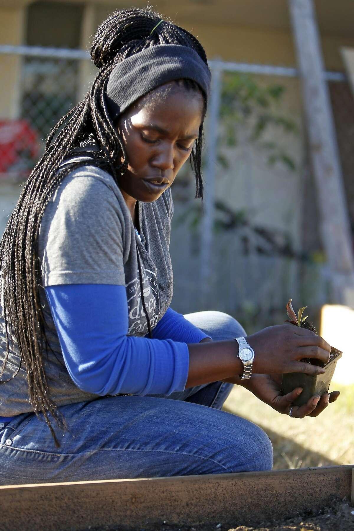 Yolanda Bowden works at Dig Deep Farms' urban farm in San Leandro, Calif., on Thursday, December 22, 2016.