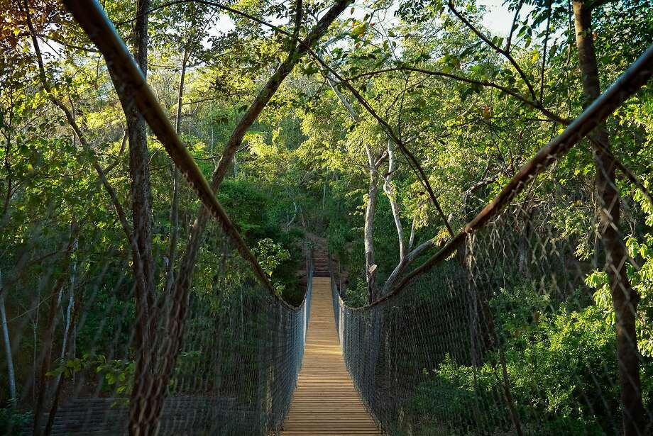 The owners of Nicaragua's luxurious Nekupe Sporting Resort and Retreat have planted more than 14,000 trees, created water reservoirs and built this swinging bridge (near right) as part of their efforts to restore and protect the ecosystem. Photo: Eduardo Santella / Nekupe